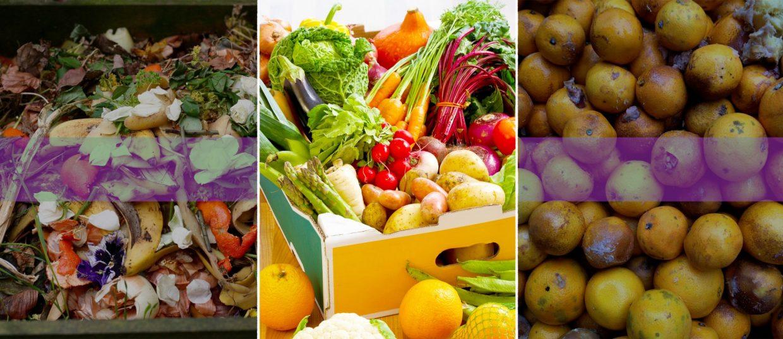 Fast Food Affecting Health