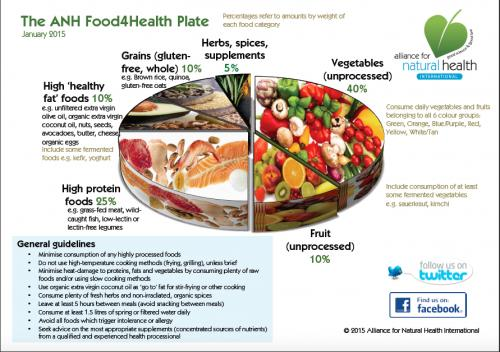 Alliance For Natural Health Food Plate